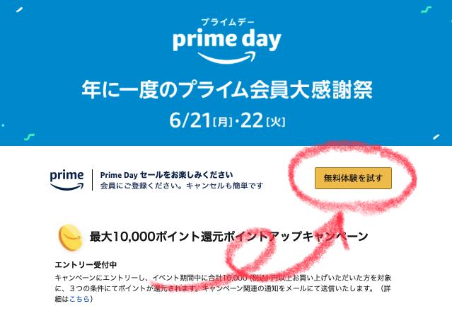 2021年Amazonプライムデー 液タブ